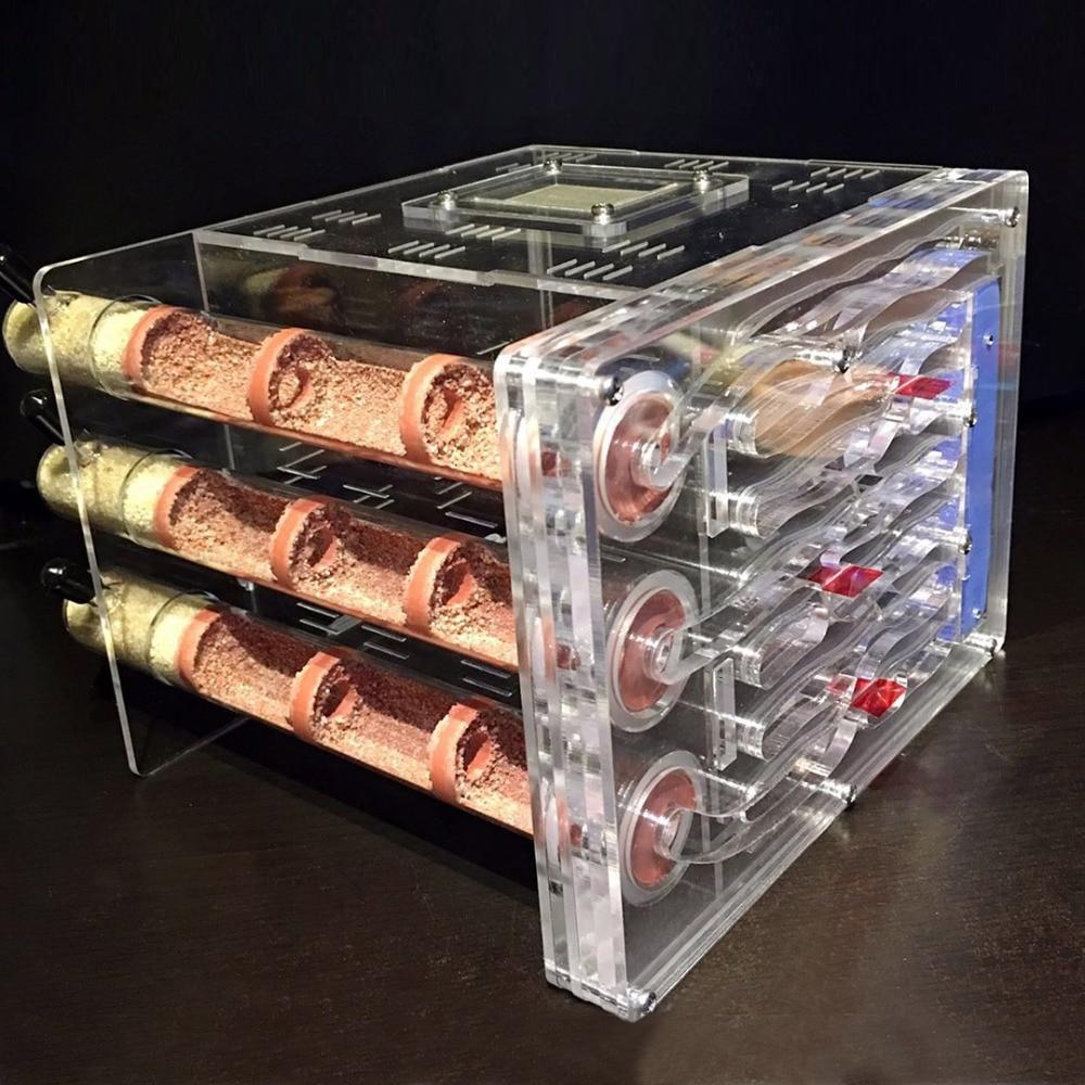 DIY Acrylic Ecological Bamboo Tube Ant Farm Ant Nest 3 Tubes with Feeding area Ant House