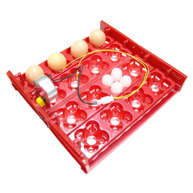 16 Курячі яйця 64 Перепелині яйця - Продукти для домашніх тварин - фото 3