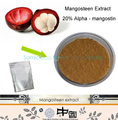 100 г 100% Чистый Премиум Mangosteen Extract Powder 20% альфа-mangostin