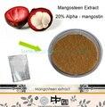 100g 100% Premium Puro Polvo de Extracto de Mangostán 20% alfa-mangostin