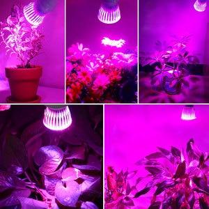 Image 5 - Wysoka dioda led dużej mocy oświetlenie do uprawy E27 pełne spektrum Fitolampy kryty rosną lampy dla roślin kwiaty nasiona rosną pudełko w kształcie namiotu wymienić światło słoneczne
