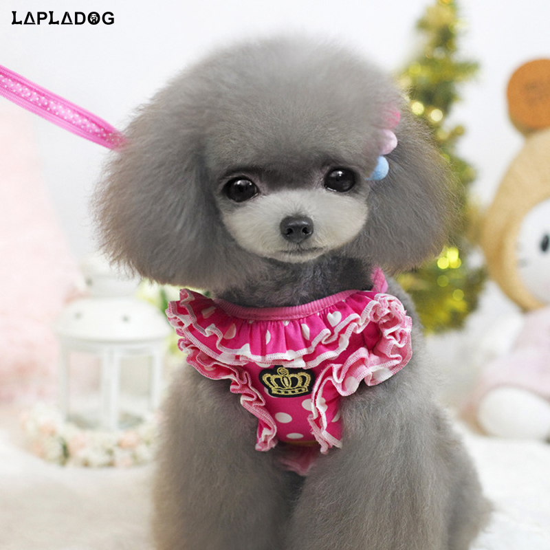2017 NEW Arrive pet dog leash harness suit small dog cat leader rope with Embroidery crown harness PT231