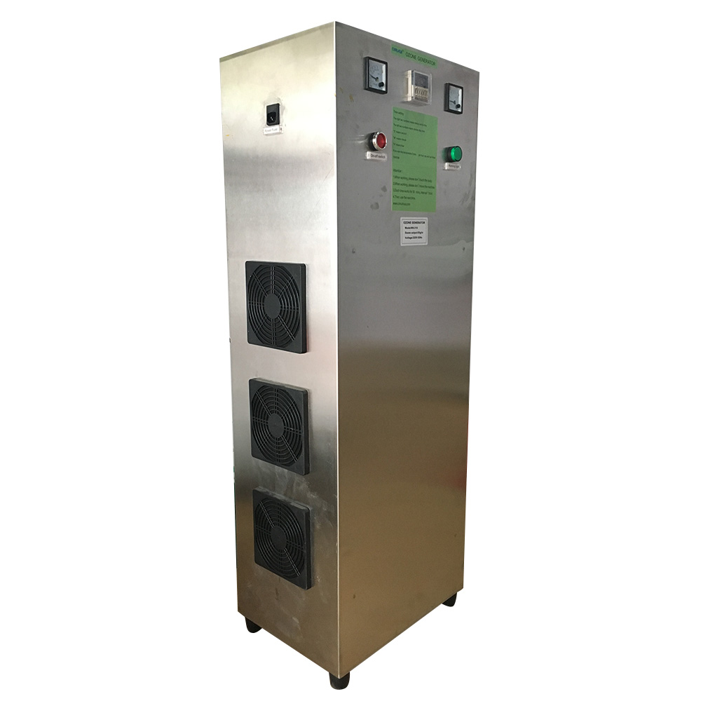 50g ozone generator (1)