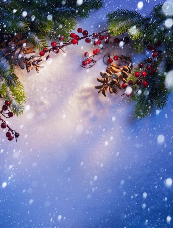 Allenjoy 10x20ft(3x6m) christmas photography backdrops Sunshine berries snow background for photo shoot ZJ