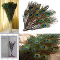 10 Pcs Cool Gifts DIY Peacock Eye Tail Feather for Masquerade Decoration Party