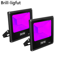 10W 20W 30W 50W UV LED Black Light Floodlight IP66 Waterproof Ultra Viole Flood Light Stage Light for Halloween Party Curing