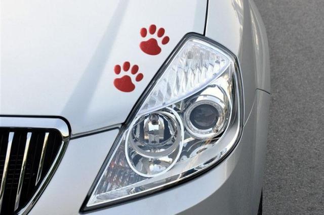 120 пар/лот) 3d собаки Авто Наклейки надписи знак черный автомобиль укладки автомобильные аксессуары - Название цвета: Красный
