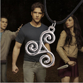 Wholesale 24pcs a lot Teen Wolf Triskele Necklace Triskelion Necklace Allison Argent Necklace Silver Plated Necklace