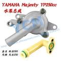 169 Conjunto de la Bomba de Agua con Tubo de Doblez Majesty YP250 LH250 YCM 300CC ATV Motor de la Bomba de Agua de Piezas Al Por Mayor