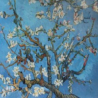 Impressionist Wall Art Canvas Oil Painting Flowers Branches of an Almond Tree in Blossom by Vincent Van Gogh Hand Painted