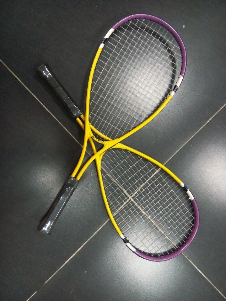 Speedminton Fun