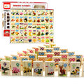 100Pcs Beech Wood Animal Domino Solitaire Domino Wooden Kids Toys Educational Blocks Baby Early Learning Toys Birthday Gift W175