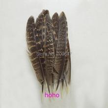 50Pcs/lot!15-20cm Natural Tragopan Pheasant Quill Feathers,Tragopan Pheasant Quills,Tragopan Wing Feathers,precious feathers 50pcs lot rt9193 15pb rt9193 15