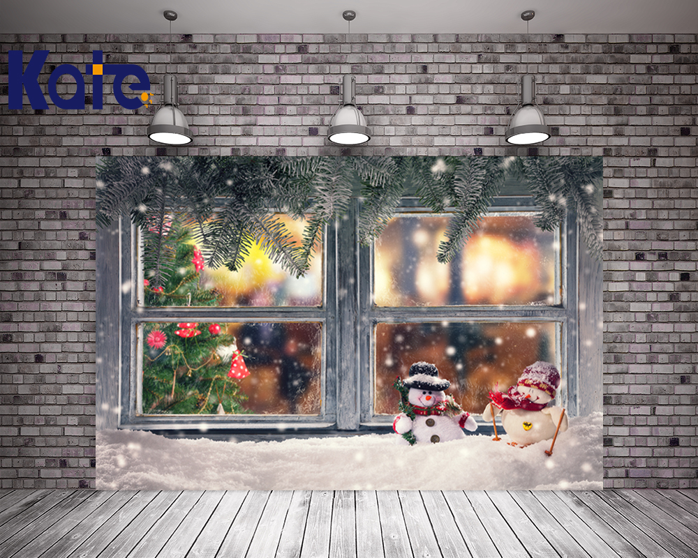 Kate No Wrinkles Photography Background Frozen Snow Windows Christmas Backdrop Photography For Children no–talk therapy for children