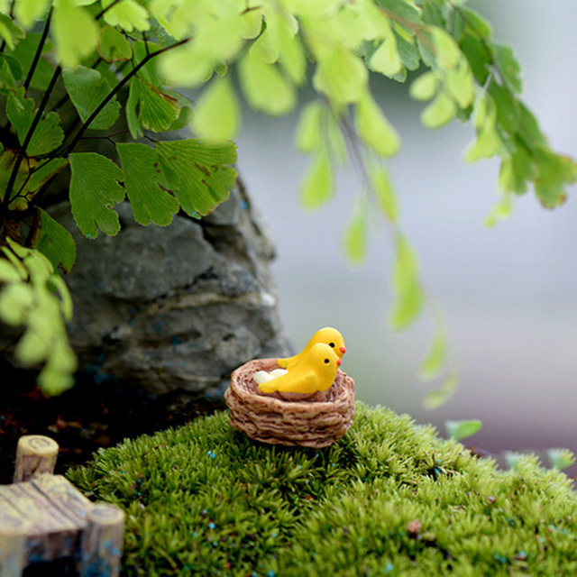 New Mini nest with birds fairy garden 5