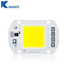 COB LED Chip Real Power 20W 30W 50W LED Lamp Bulb 220V 240V Input IP65 Smart IC For DIY Outdoor LED Flood Light Beads