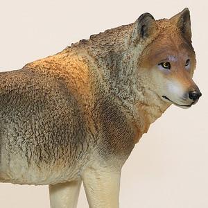 Image 2 - DDWE lupo selvatico modello giocattolo animali antichi selvatici simulazione bambino solido Zoo modello fauna selvatica mondo giocattoli per bambini giocattoli educativi