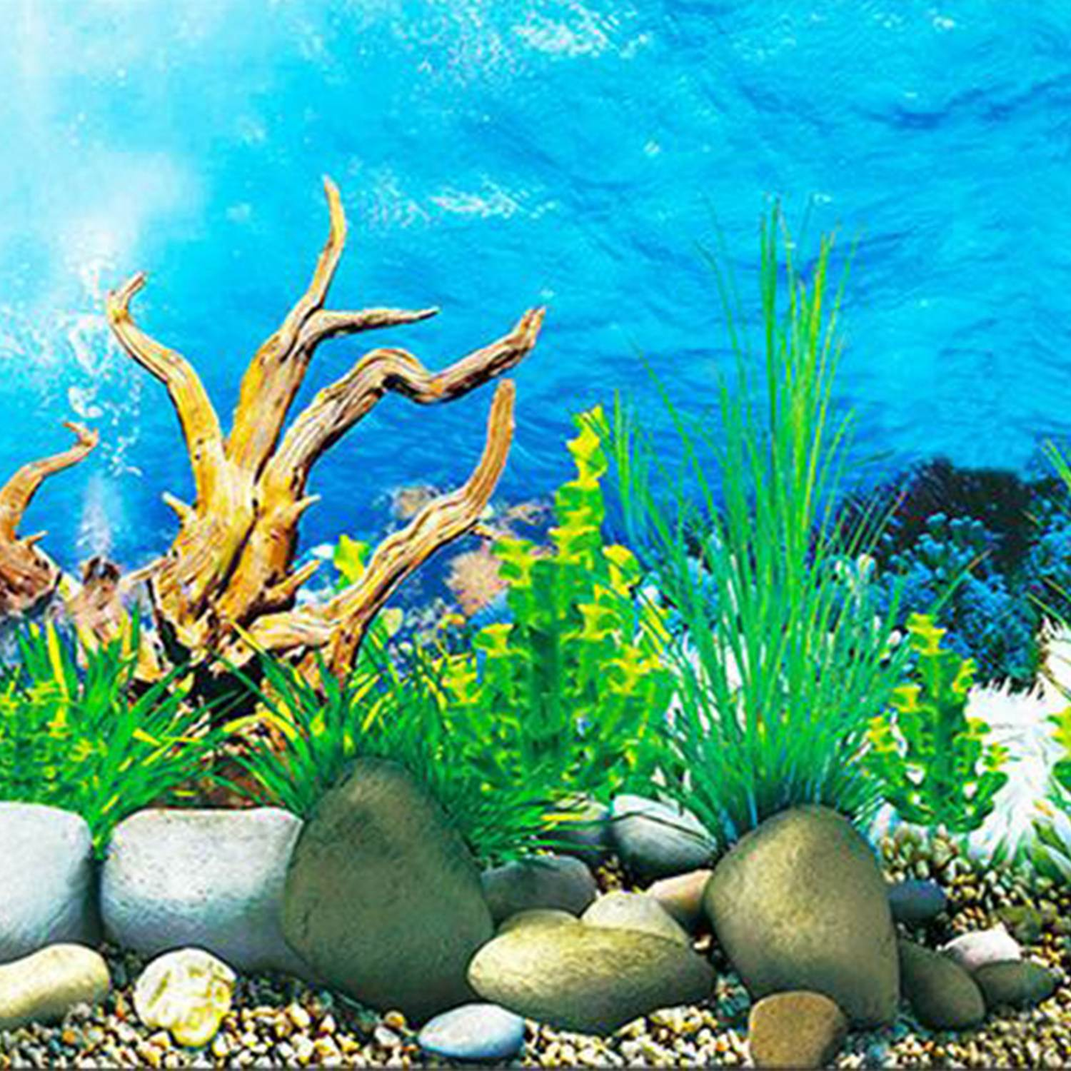 IALJ Top Aquarium Background Paper HD Picture 3d Three