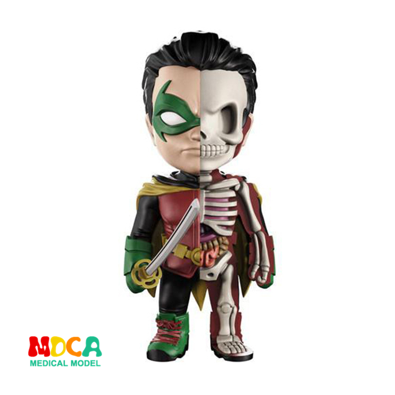 Robin Hood 4D XXRAY master Mighty Jaxx Jason Freeny anatomy Cartoon ornament cacti mighty 4d xxray master mighty jaxx jason freeny anatomy cartoon ornament