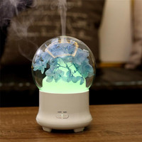 Dried Flower Clear Colorful Ball Oil Humidifier Ultrasonic Flower Petal Led Light Bedroom Oil Aroma Diffuser