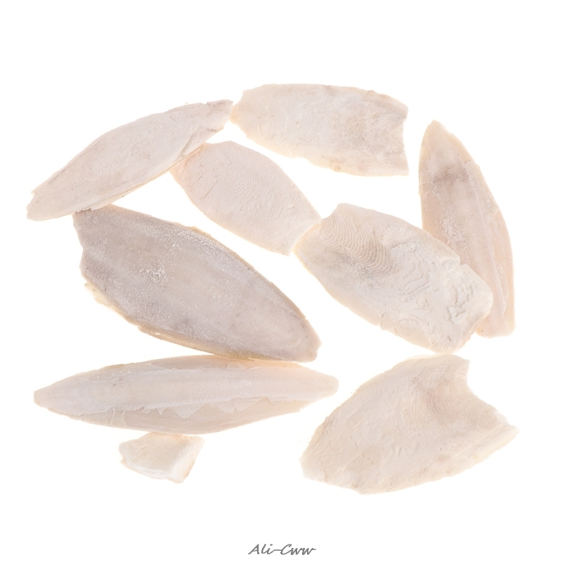1 Bag Cuttlebone Cuttlefish Sepia Bone Cuttle Fish Bird Food Calcium Pickstone Pet
