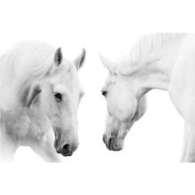White Horse Painting Canvas High Quality Printed Animal Poster Modern Home wall Oil for Living Room