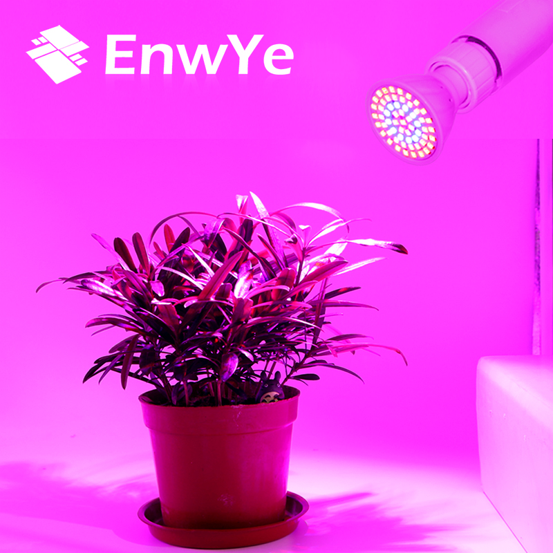 EnwYe LED Lampada Grow Light E27 E14 MR16 GU10 220V Full Spectrum Indoor Plant Lamp For Plants Vegs Hydroponic System Plant