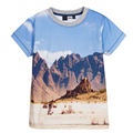 2017 Summer New Children 3D Boys Tshirt  Sport Children Clothing Boys T-Shirt Cars Mountain Print Brand Design Tops.
