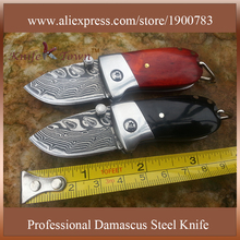 Pocket knife folding blade knife damascus steel blade mini gift knife stainless steel camping knife key chain tool DT129