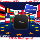 Europe Arabic IPTV Box IPTV Subscription Live TV 4K HD X96 Mini Android TV Box for French Spanish UK Portugal Italy Channels