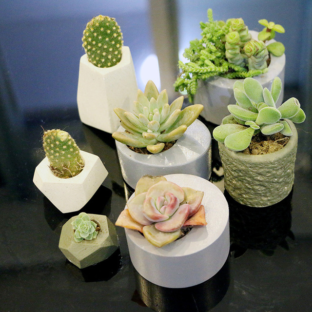 Succulent flower pot silicone mold concrete gypsum pot mold small thumb flowerpot mold