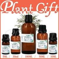 Free Shopping100 Pure Plant Essential Oil Pine Needle Oil 10ml Antibacterial Improve Bronchial Laryngitis