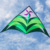 Venda quente Pipa Pipa Brinquedos Ao Ar Livre Personalidade Resina Orquídea Hastes Volant Kites Pipas Voadores Vela Surf Pipas para Crianças
