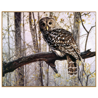 PHKV Owl Oil Painting By Numbers On Canvas DIY Hand Painted Modern Animal Painting Coloring By