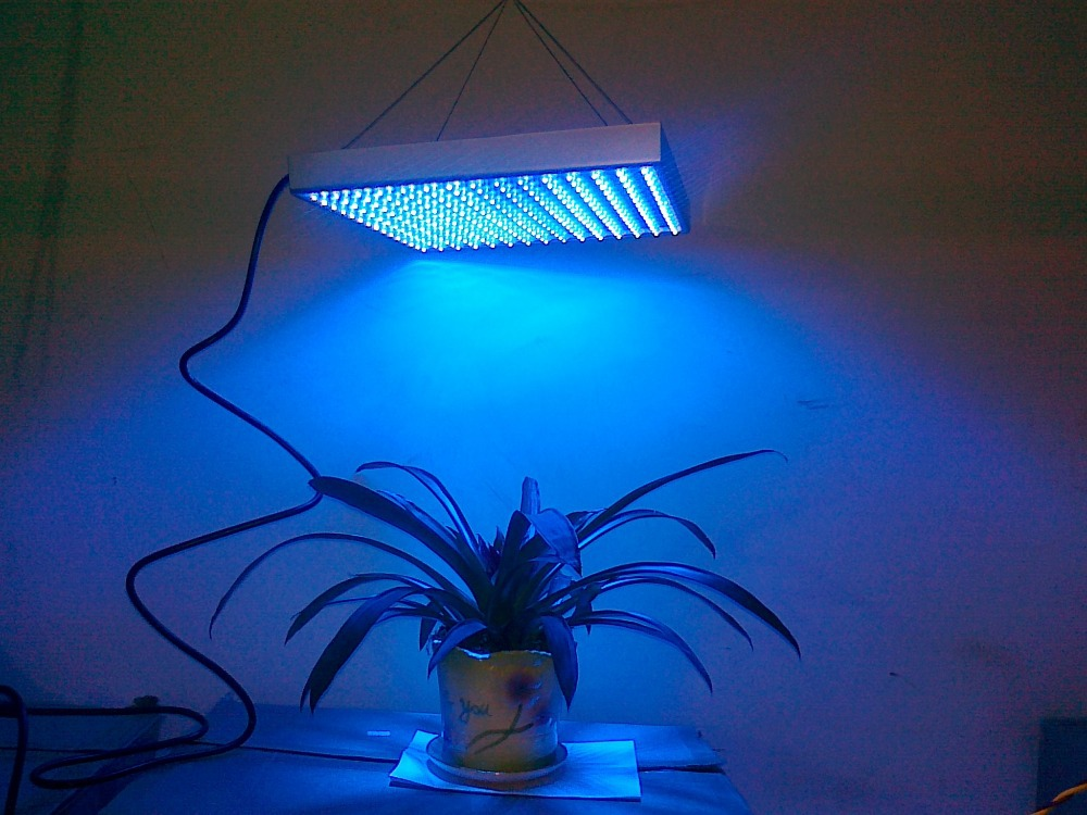 LED grow light all blue 460nm Free Shipping by DHL/FEDEX/EMS LED Grow Light plant lights new 15W 225lights