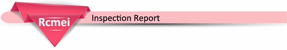 Inspection Report 6