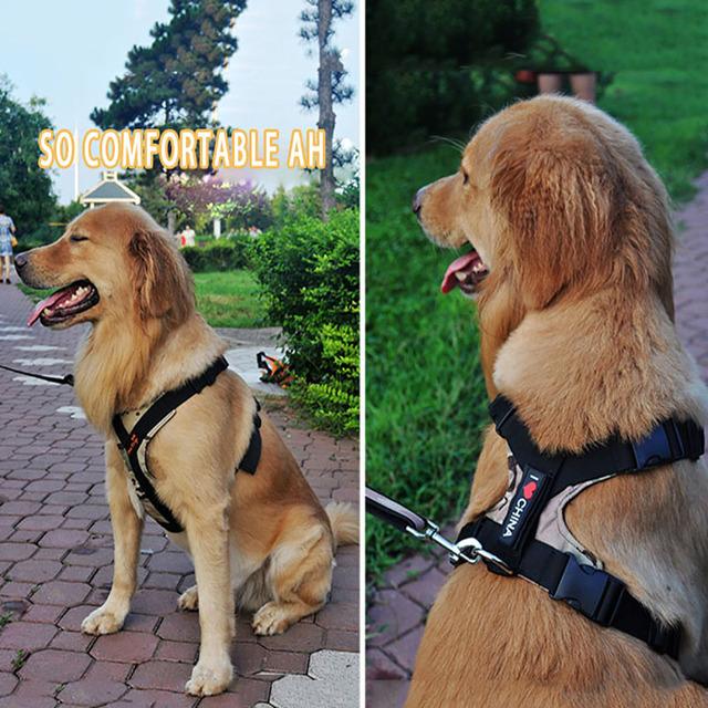 Pet Dog Harness K9 Collar