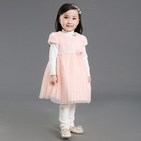 2017 Autumn Winter Princess Party Wedding Baby Girl Clothes Villus Short Sleeves Embroidery Mesh Dress For