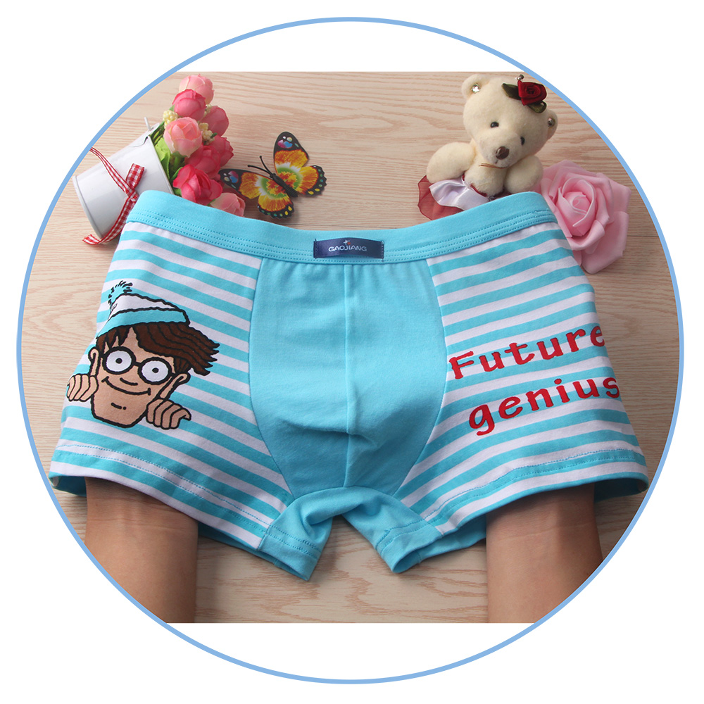d9623f83a08b 2018 New 2 Pcs/lot Bamboo Fiber Underpants Comfortable Breathable Underwear  Kids boys Boxer for 3 10Yrs Boys Briefs QS1006 on Aliexpress.com | Alibaba  Group