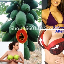 100% True Japanese Papaya Tree Organic Carica Bonsai For Garden Vegetable Fruit Plants 30 pcs / bag Outdoor Tropic