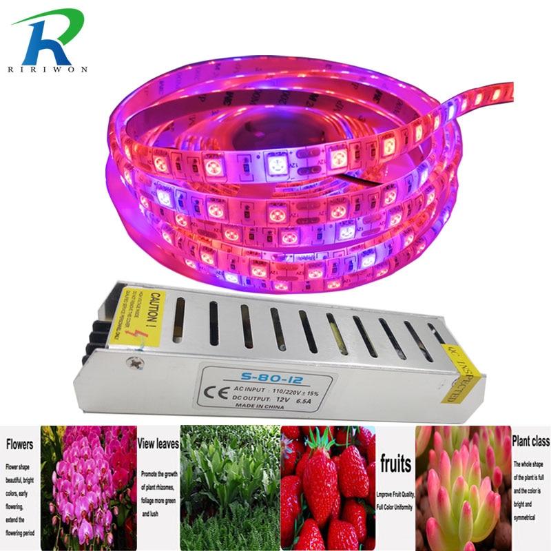 RiRi будет 5050 светодиодный расти полосы света Водонепроницаемый SMD растений гидропонных систем светодиодный s полосы света полный спектр рас...