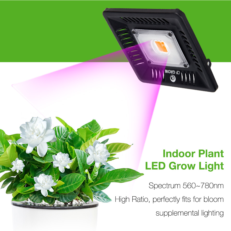 Led Grow Light Full Spectrum 100W 200W Waterproof IP67 COB Grow LED Lamp for Plant Indoor Outdoor Hydroponic Greenhouse Lighting in LED Grow Lights from Lights Lighting