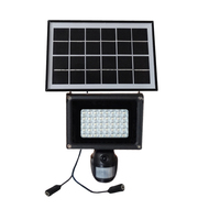 HD 720P Solar Lamp PIR DVR with Motion Detection & 40pcs of LED Light & 2W Solar Power Panel IP54 Waterproof for Home & Garden