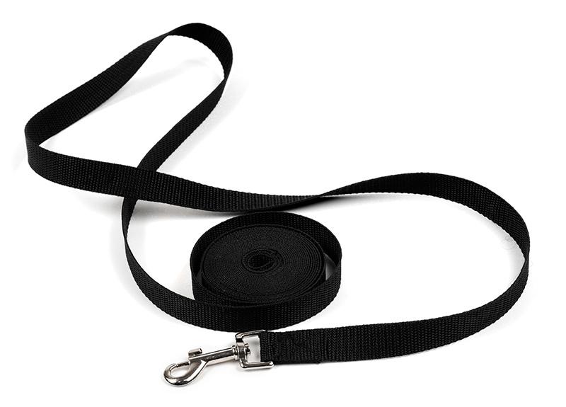 longe pour chien 6m et 2,5 cm de large avec poignée