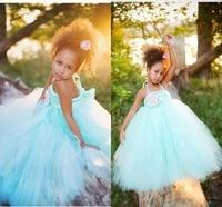 Flower Girl Performance Costumes Dresses Tutu Dresses with Flower Sash Beautiful Little Kids Birthday Party Dresses