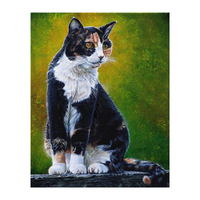 Hand painted canvas art realist wall pictures for living room cheap oil paintings cat pet home decor cavans painting