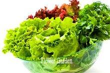 Best-Selling! 100 Pcs/Pack Organic Spring Lettuce Vegetable Seeds good taste, easy to grow,great salad choice,DIY Home vegetable