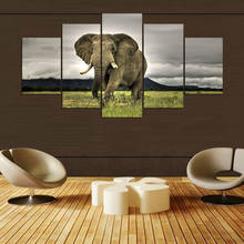 5 Pieces HD Canvas Painting Paint Animal Elephants Modular For Modern Decorative Bedroom Living Room Home Wall Art Decor(China)