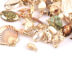 20-40mm mix Natural Shell Gold Plated for DIY handmade pendant SeaShells Home decoration 5pcs TRS0251
