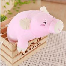WYZHY down cotton pig hug plush toy sofa decoration to send friends and children gifts 70CM